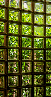 Glass cube wall distorting greenery behind it